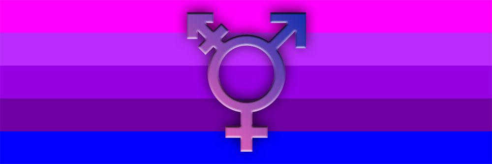 Appeals court transgender student