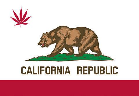 New California Marijuana Laws