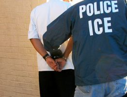 ICE Delays arrests coronavirus